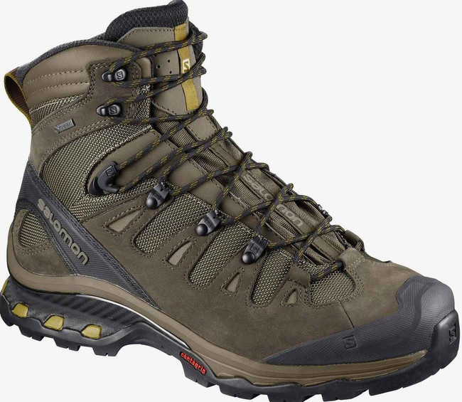 Salomon Mens Wren Quest 4D 3 GTX Hiking Boot L40151800 L40151800
