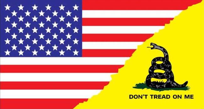 LA Police Gear Medium Gadsden Split US Flag 3.25 x 1.75 Sticker FLAGSTICKER-GADSPM