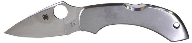 Spyderco Dragonfly Stainless Steel Folding Knife DFSS