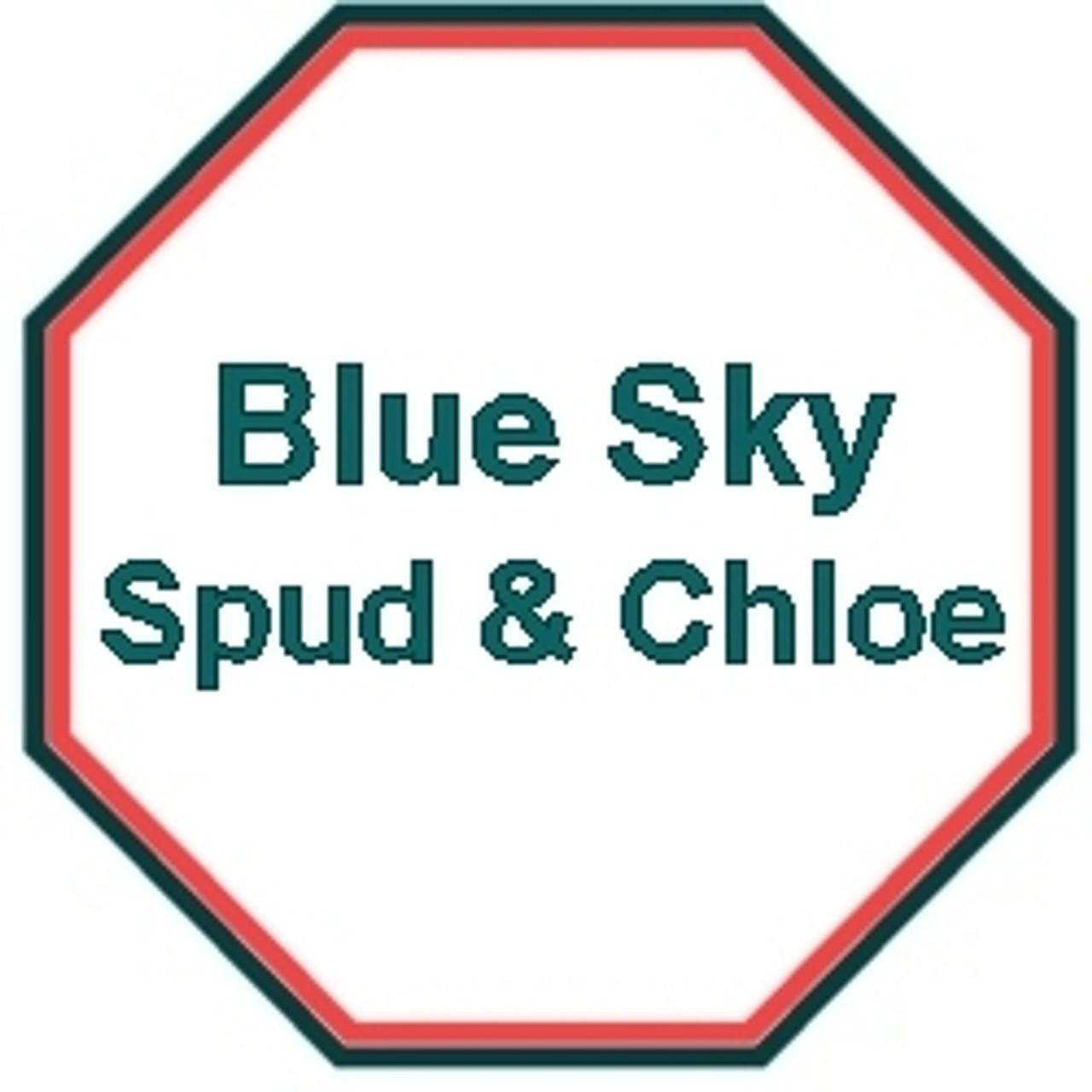 Blue Sky Fibers/Spud & Chloe