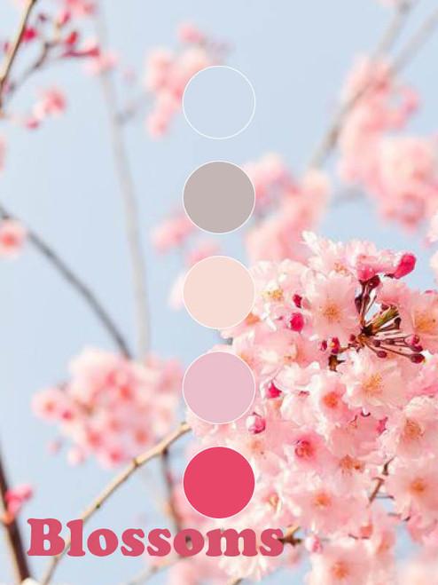 Koigu Collector Colour Club - Cheers
