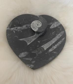 Fossil Heart Shape Dish