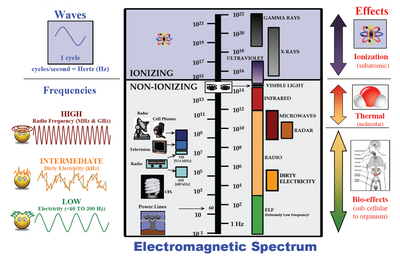 What are some common sources of electromagnetic pollutions?