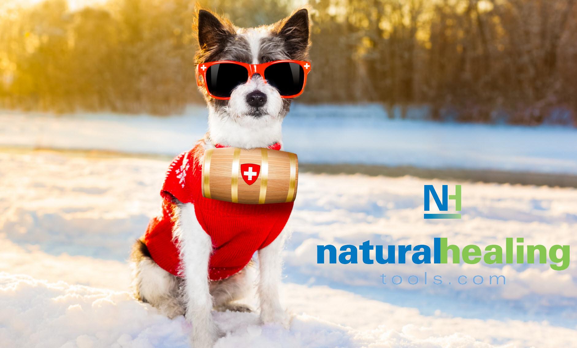 Shop Natural Healing Tools