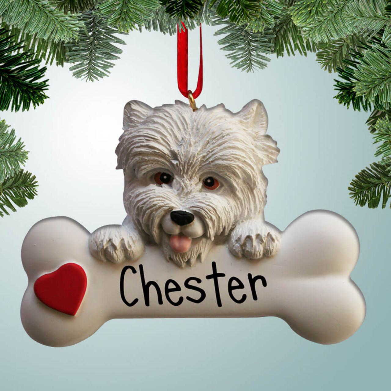 Westie Dog on Bone