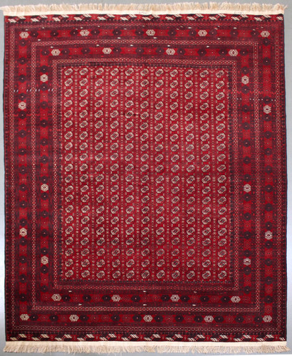 Khoja Roshnai Fine Tribal Rug (Ref 187) 330x240cm
