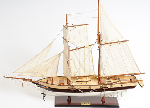 Pirate Privateer Lynx Topsail Schooner Ship Model