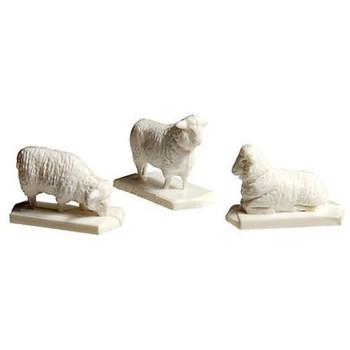 Atlas 779 HO SHEEP 18 WHITE/1 BLACK