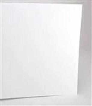 """Evergreen 19125 12 X 24"""" PLAIN WHITE .125""""  THICK   (2)"""