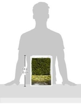 """Bachmann 32921 Scenery Light Green Tufted Grass Mat (one 11.75"""" X 7.5"""" sheet)"""