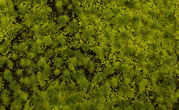 """Bachmann 32921 All Scales Light Green Tufted Grass Mat 11.75"""" X 7.5"""" Sheet SceneScapes"""