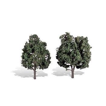 "Classics Tree, Cool Shade 5-6"" (2)"