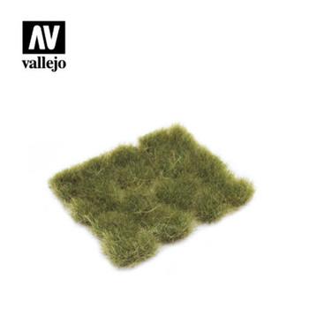 Vallejo SC424 Wild Tuft ? Dry Green