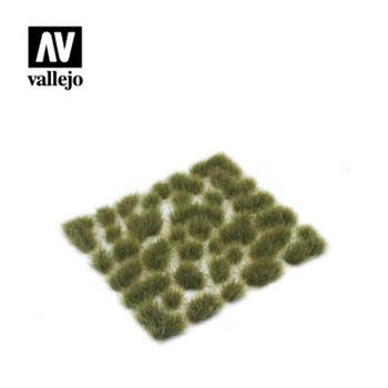 Vallejo SC415 Wild Tuft ? Dry Green