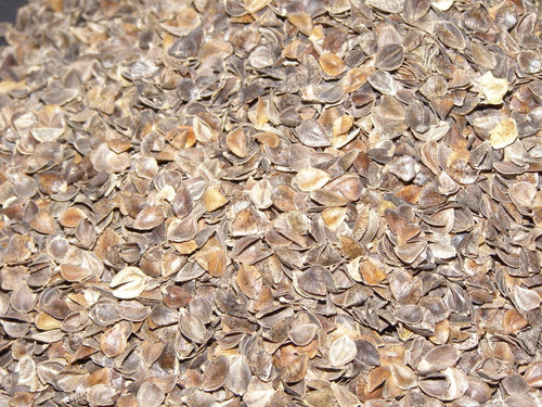 Buckwheat Hulls close up