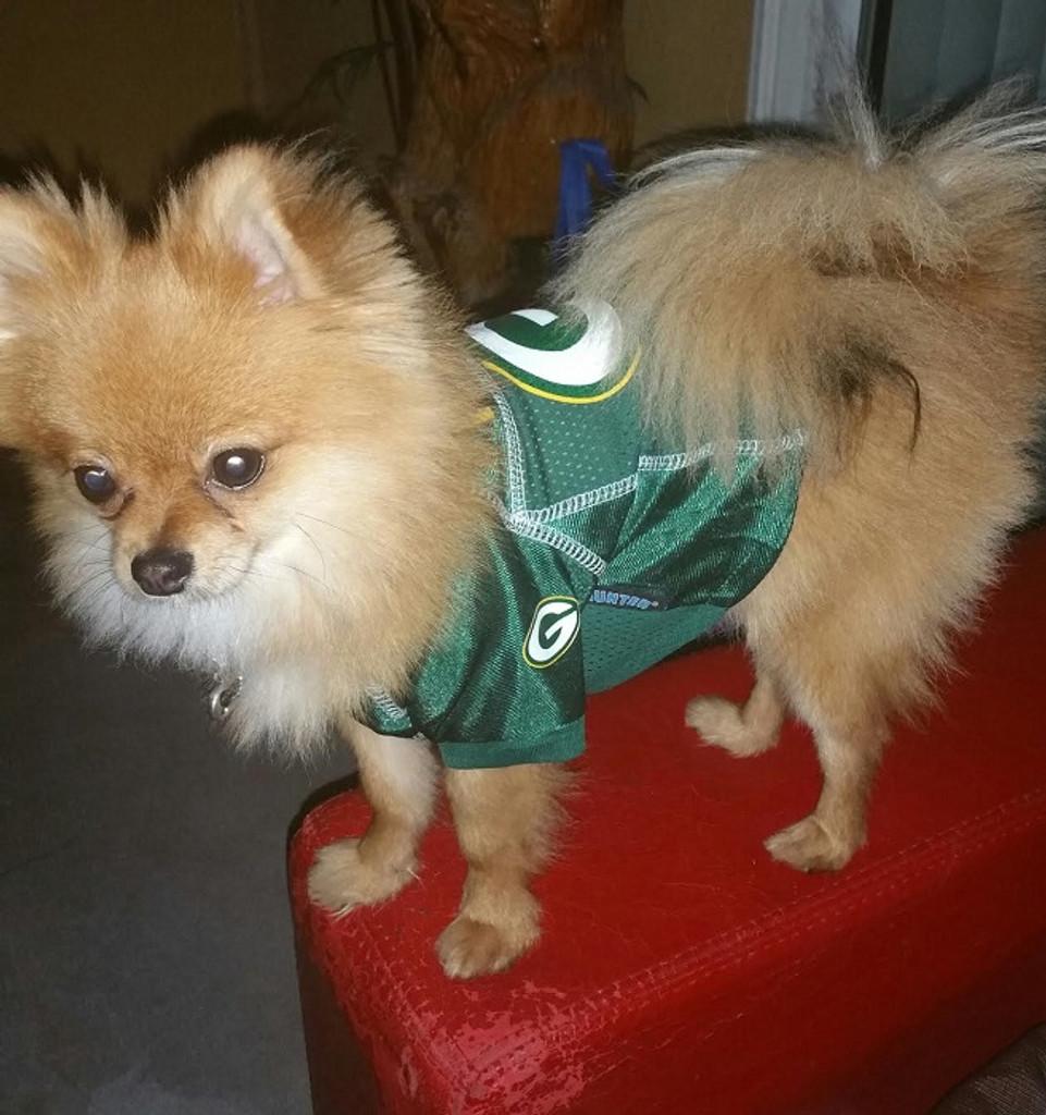 fd7b888f8 Green Bay Packers Dog Pet Premium Alternate Mesh Football Jersey ...