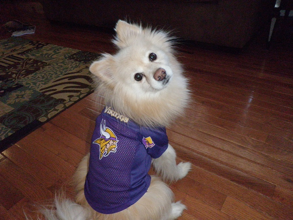 40b16afd Minnesota Vikings Dog Pet Mesh Alternate Football Jersey