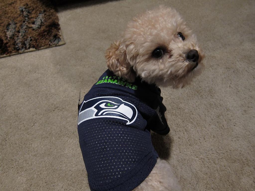 cheap for discount a0add 9fb7b Seattle Seahawks Dog Pet Mesh Alternate Football Jersey