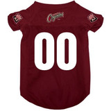 Arizona Coyotes Dog Pet Mesh Alternate Hockey Jersey