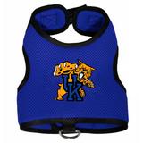 Kentucky Wildcats Dog Pet Premium Mesh Vest Harness