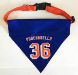 Poocharello #36 Jersey Dog Pet Bandana & Adjustable Collar Set