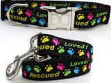 Rescued Loved Dog Collar & Leash Premium Set Personalized +