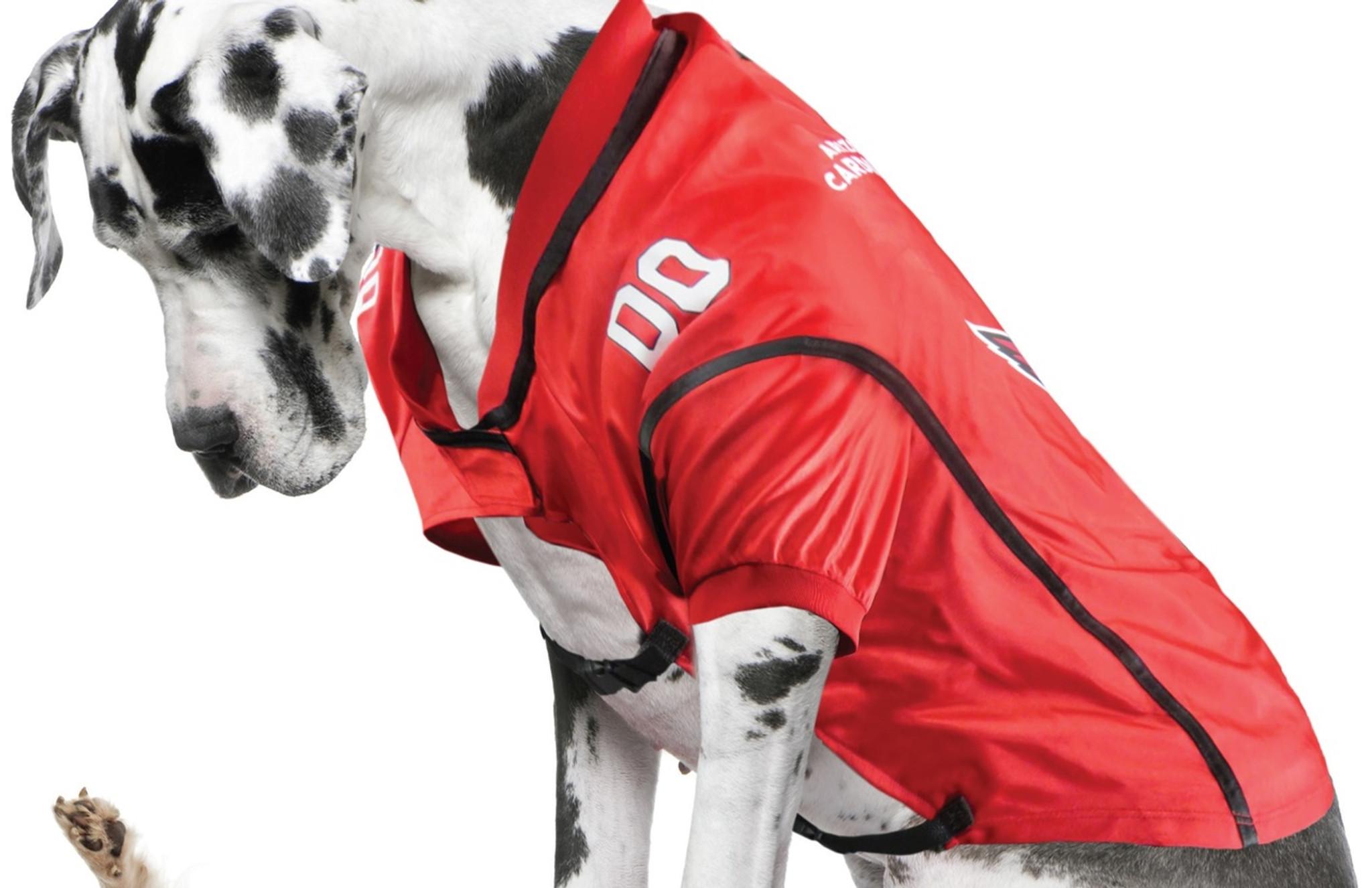 NEW WASHINGTON REDSKINS PET DOG PREMIUM REFLECTIVE JACKET LICENSED ALL SIZES