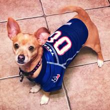 in stock 3a54d a7f78 Houston Texans Dog Pet Premium Mesh Football Jersey
