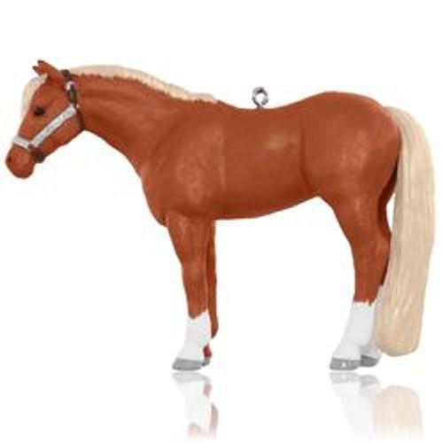 2015 Dream Horse - Quarter Horse