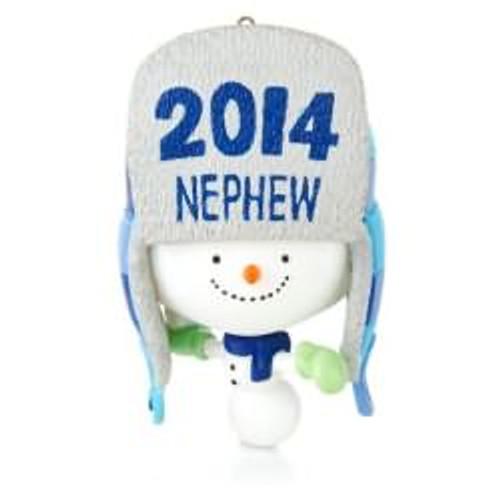2014 One Awesome Nephew