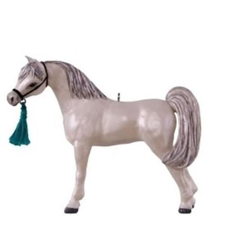 2018 Dream Horse: Arabian