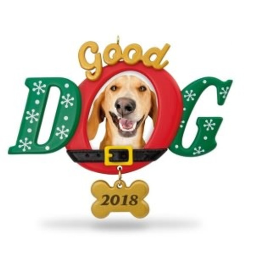 2018 Good Dog - Photo