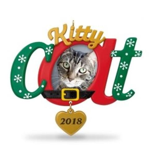 2018 Kitty Cat - Photo
