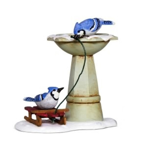 2018 Marjolein's Garden #5 - Bathing Blue Jays