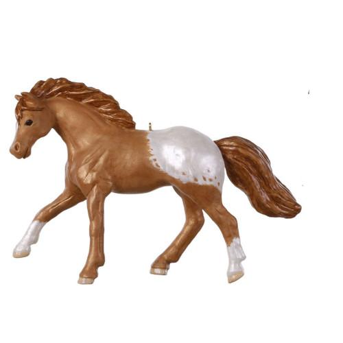 2019 Dream Horse - Appaloosa Hallmark ornament (QGO2207)