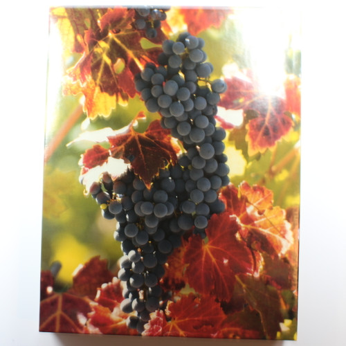 On the Vine - 500 Pieces - Puzzle