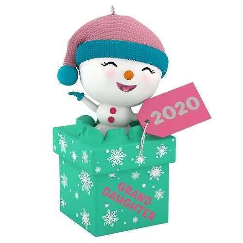 2020 The Gift of Granddaughters Hallmark ornament (QGO1704)