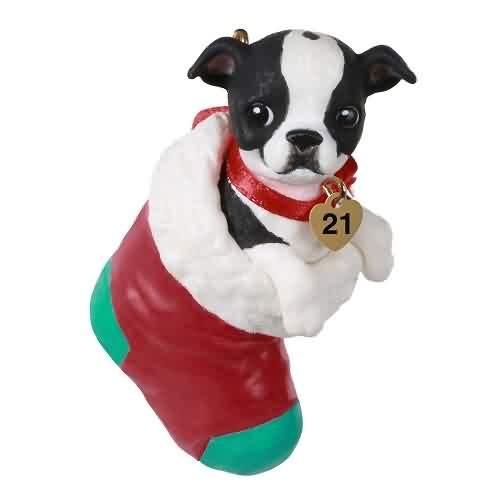 2021 Puppy Love #31 - Boston Terrier Hallmark ornament (QXR9002)