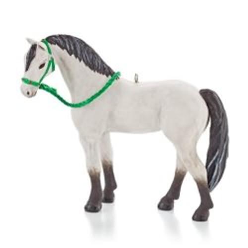 2013 Dream Horse
