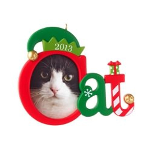 2013 Cute Kitty