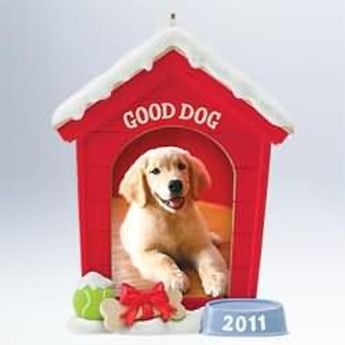 2011 Good Dog - Photo