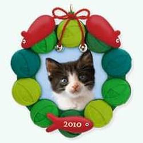 2010 Pretty Kitty - Photo