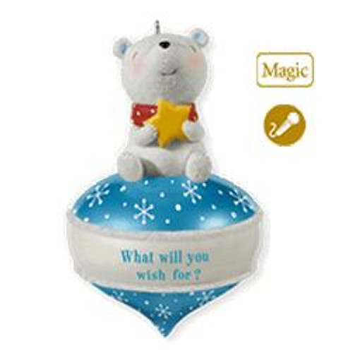 2010 What Will You Wish For - Recordable