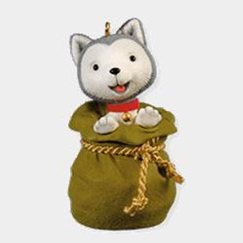 2010 Jingle The Husky Pup