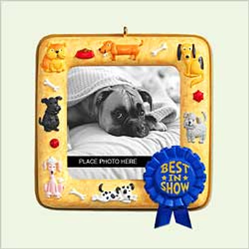 2005 Best In Show - Dog