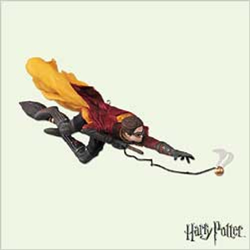 2005 Harry Potter - Quidditch Match