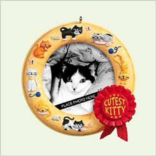2005 Cutest Kitty - Photo