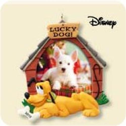 2007 Lucky Dog - Photo