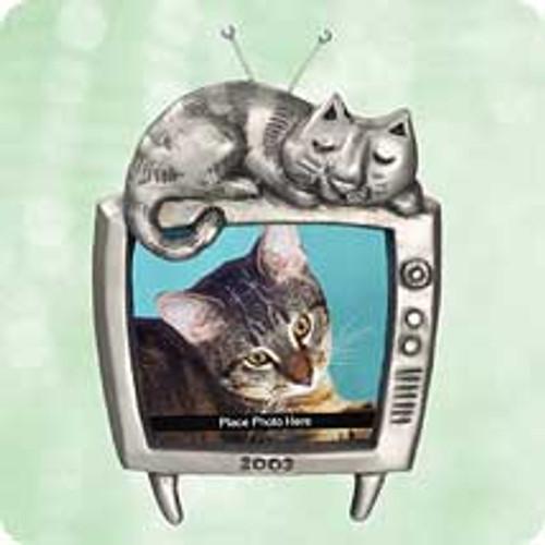 2003 Special Cat Hallmark ornament