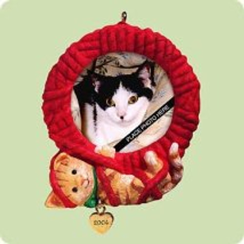 2004 Special Cat Hallmark ornament
